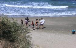 Adopt a coast