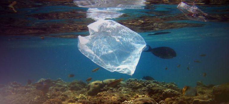 Ευρωπαϊκή Επιτροπή: Δελτίο Τύπου για μείωση των σκουπίδιων της θάλασσας